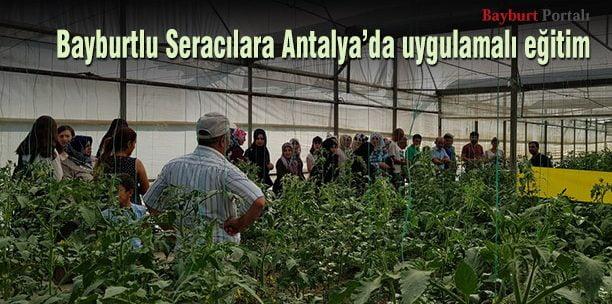 Kursiyerlerimize Antalya'da Sera Eğitimi